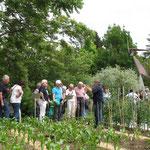 Führung Landesanstalt für Wein- und Gartenbau Veitshöchheim