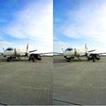 搭乗した飛行機。これまたビックリの3D!