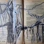 Des racines et des lianes