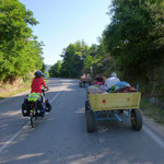 De nombreuses charrettes sur les routes de campagne