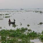 Delta du Mekong, un des nombreux bras du fleuve