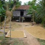 Une ferme cambodgienne