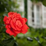 Domaine de l'Ermaitage - Chambres d'hotes - Photo: Véronique Hadengue
