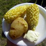 Choclos (Maiskolben) mit Kartoffel und ecuadorianischen Weichkäse.
