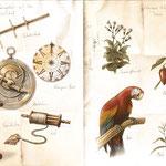 Navigation auf See & Entdeckungen in der Neuen Welt