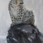 Schneeleopard, 70 x 50 cm, 2013, Oel auf Leinwand    (verkauft, sold)