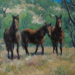 Wilde Pferde, Oel auf Leinwand - verkauft / sold
