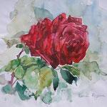 Rose, 16x16 cm,      Aquarell / verkauft / sold