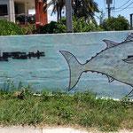 2018 tagged fish