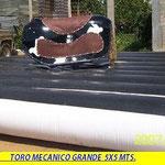 """""""Toro Grande"""""""