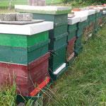 Bienenstand in Jois