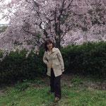 桜の下でポーズするクリスタルちゃん(´艸`*)