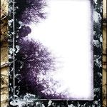 Yul (Fotografía transferida a lienzo con huellas de planta en pintura acrílica plata)