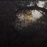 Romanticismo: soñando un atardecer