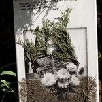 Ofrenda de flores (Fotografía transferida a lienzo y decorada con ciprés y tierra del camposanto fotografiado)
