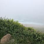 Nebeltag ... wo ist das Meer?