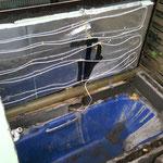 Die Badewanne ist umgezogen neben das Gewächshaus, damit die Tiere mehr Platz haben