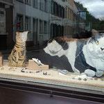 Schaufenster Ecke mit Labradorit und Mondstein