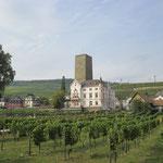 Blick auf Rüdesheim mit Brömserburg