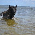 Beim Schwimmen