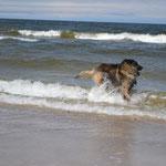 Laufen an der Ostsee