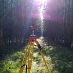 Polygonzug durch den Wald
