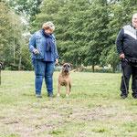 nest black Terugkomdag 2020; Blacky, mama Roos en Biko