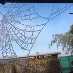 Ein Kunstwerk der Superlative, hauchzart und mit Kristallglitzer überzogen.