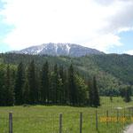 Blick auf den Schneeberg, Fadenwände