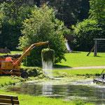 Um eine Eutrophierung des Sees zu vermeiden, müssen die zu schnell wuchernden Grünpflanzen entfernt werden.
