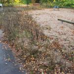 2012 Unkraut statt Spielplatz Foto:W.D