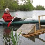 Ein NABU-Aktiver bringt Schwimminseln für Enten in Niederwalgern auf einen See aus. Foto: Eberhard Lübbeke