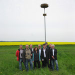 Eine Storchennisthilfe wurde im NSG Marienbach aufgestellt. Foto: Eberhard Lübbeke
