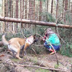 Vermisst ! weggelaufene Kinder im Wald