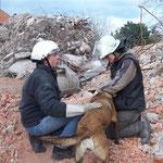 Trümmertraining, gesucht-gefunden-gelobt