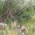 Vermisste Person im Geäst eines Baumes