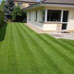 So kann ein Rasen aussehen, der mit den Swardman Spindelmäher gepflegt wird.