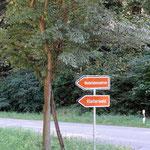 Klettern im Wald-Hochseilgarten Regensburg