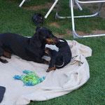 mit Papa im Garten ist so schön;  26.07.2012
