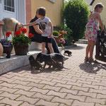 Sommer, Sonne und Familie (29.06.; 5 Wochen alt)