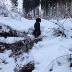 oh, Schnee, wie selten; 2013/2014