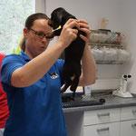 Der Besuch beim Tierarzt war spannend und die Tierärztin ganz lieb zu mir