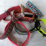 Verschiedene Zugstopp-Halsbänder, mit Webband, Stopper verz. Stahl, gepolstert mit passendem Lederr