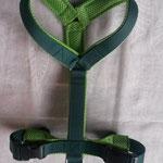 Führgeschirr: Gurtband dunkelgrün, Polster grünes AirMesch, Edelstahlringe