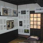 2階広間には動植物の紹介パネル「ブナの森サテライト」