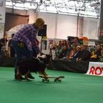 Ida - Skateboard