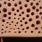Bienenstein - Detail mit besetzen Bruträumen  - Foto: Britta Raabe