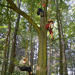 """NABU Sommerfest 2016 - """"die Baumbotschafter"""" in Aktion - Foto Dieter Goy"""
