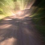 Weg ins Licht von Walter J. Pilsak