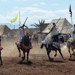 Reiterspiele in Marokko von Bernt Halbauer
